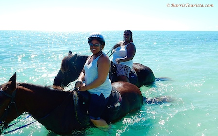 BarrisTourista-Provo Ponies Ocean Ride Small planning a trip to turks and caicos
