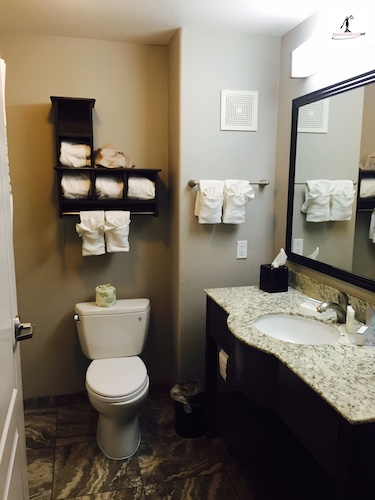 BarrisTourista-Hampton Inn Temecula Bathroom